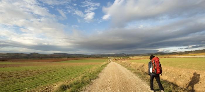 Dewaldt, Suzelle en Die Camino!